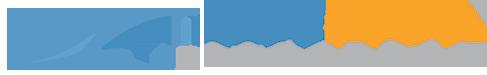 Blue Wave Concepts, LLC Website Design and Development Logo